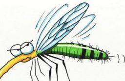 Szúnyogírtás – Budapesten és 156 településen permeteznek a héten