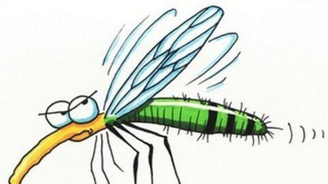 Tégy Te magad is a szúnyog ellen!